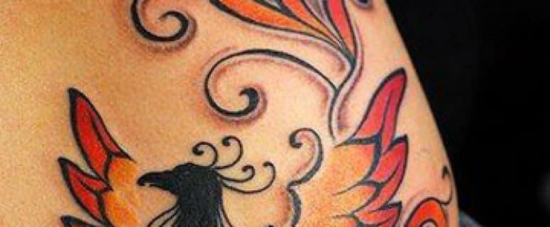 Ave Fenix Tatuaje Significado 22534 Pixhd