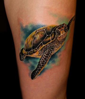 tatuajes de tortugas marinas a color