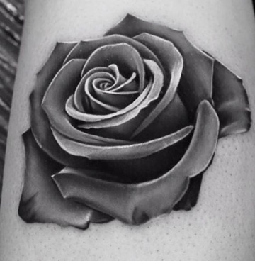 Diseos Rosas Estilos Y Diseos De Tatuajes De Rosas Para Mujeres - Diseos-de-rosas