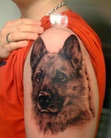 tatuajes de pastor aleman en el brazo