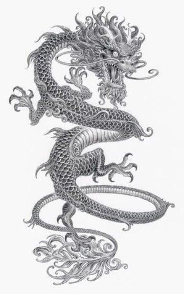 imagenes de dragones para tatuajes en blanco y negro
