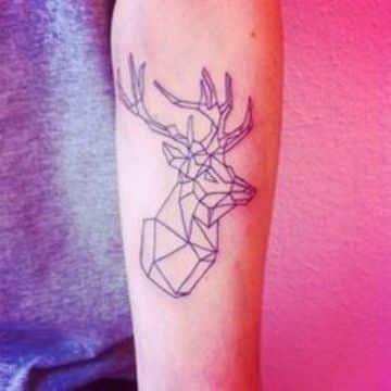 animales con figuras geometricas en el brazo