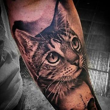 tatuajes de gatos realistas en el antebrazo