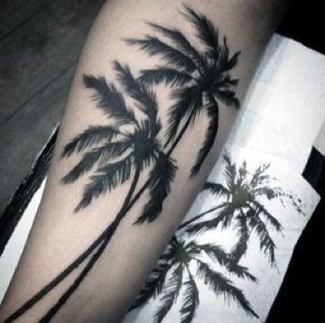 imagenes de tatuajes de palmeras significado