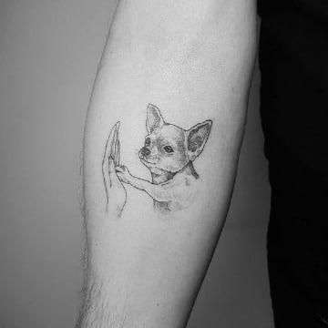 imagenes de tatuajes de perros chihuahuas