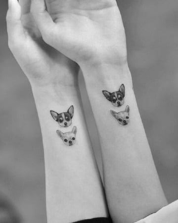 tatuajes de perros chihuahuas para hermanos