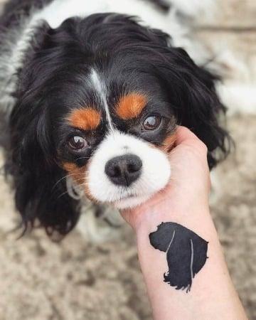 imagenes de tatuajes de perros cocker