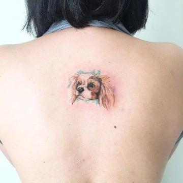 tatuajes de perros cocker en la espalda