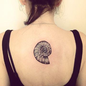 tatuajes de caracoles de mar en espalda