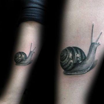 tatuajes de caracoles de mar realistas