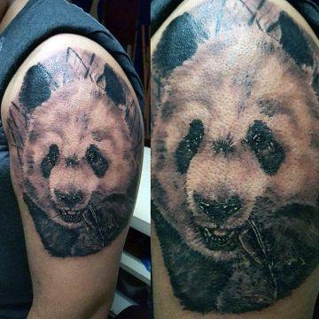 tatuajes de osos panda realistas