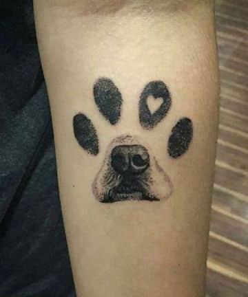tatuajes con huellas de perros creativa