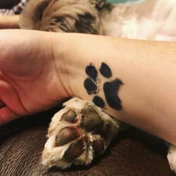 tatuajes con huellas de perros real