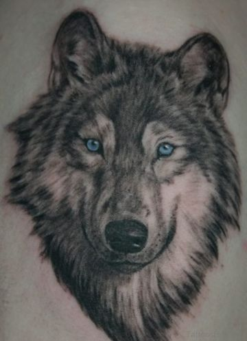 tatuajes de lobos siberianos retrato
