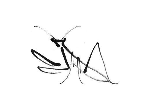 tatuajes de mantis religiosa plantilla influencia idegrama chino