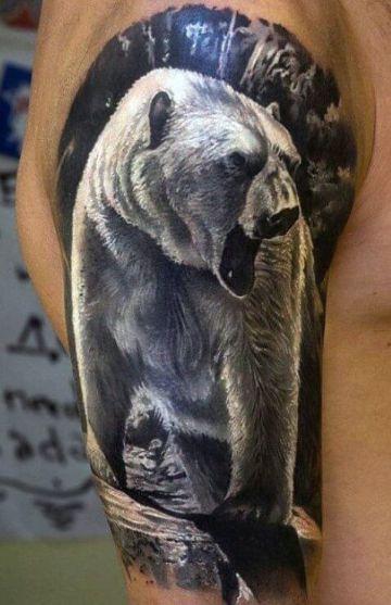 tatuajes de oso polar realistas