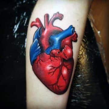 tatuajes de corazones de colores anatomicos