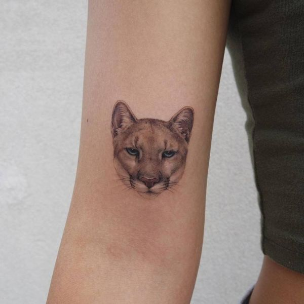 tatuajes de pumas en el brazo pequeño en alta definición